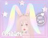 C   e Rainbow Bun Ears