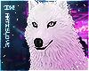 Yufj  White Pet Wolf