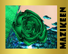 Shimmer Hip Roses