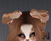BRONZER Ear 3 - Chubby