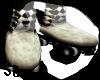 SD Carni Skates