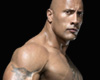 *R* The Rock cut out