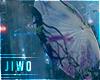 Jacaranda Parasol 🌂 U