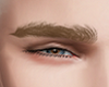 Eyebrows Blond