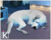 |K ND Sleeping Puppy