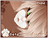 [Pets] Fievel | hair v5