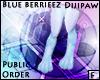 BlueBerrieez Dijipaws F