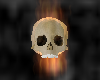 Flameing Floating Skull