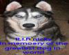 R.I.P good friend