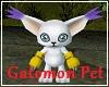 Gatomon Pet