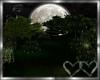 Amour Moonlit Forest