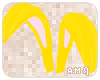 A.M.| Bunny2016 - Ears