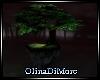 (OD) The Last Tree