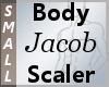 Body Scaler Jacob S