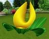 Yellow Rose Lotus Chair