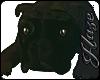 [IH] Trap Dog