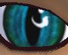 {DWW} Aqua Eye M