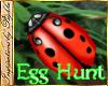 I~Egg Hunt*Ladybug