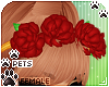 [Pets] Quin | rose band