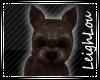[LL]TotoDog