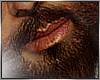 ₪ Black Beard