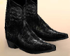 ~T~ Vt - Cowboy Boots