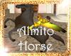 !(ALM) DARK HORSE