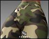 """Military"" Leggings. RLL"