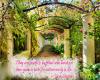 Nature Quote Jane Austen
