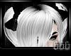 ~V~ Ghost Zora