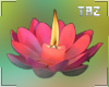 Candle Flower Effect