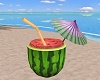 beach Watermelon chair