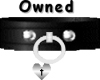 Owned w/collar Silver