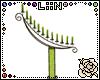LiiN Candles5 Summer