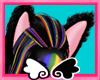 rainbow cat ears