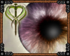 {R} Faenean Eyes