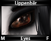 Lippenbär Eyes
