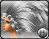 [Hax] Windy Silver
