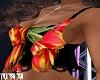 Tulip Crop Top