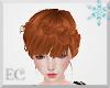 EC| Queen Anna Ginger