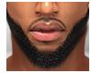 Delight Beard