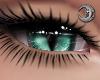 Feline Chesh Eyes F