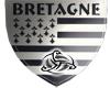 embleme breton
