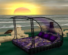~TQ~curved Purple bed