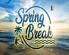 Spring Break Screen