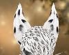 dalmation ears