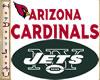 ~H~Jets Cardinals Decor