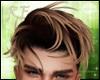 Firo Hair Brown Blonde