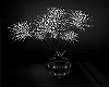 Elegance Plant