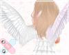 ♚ angel wings